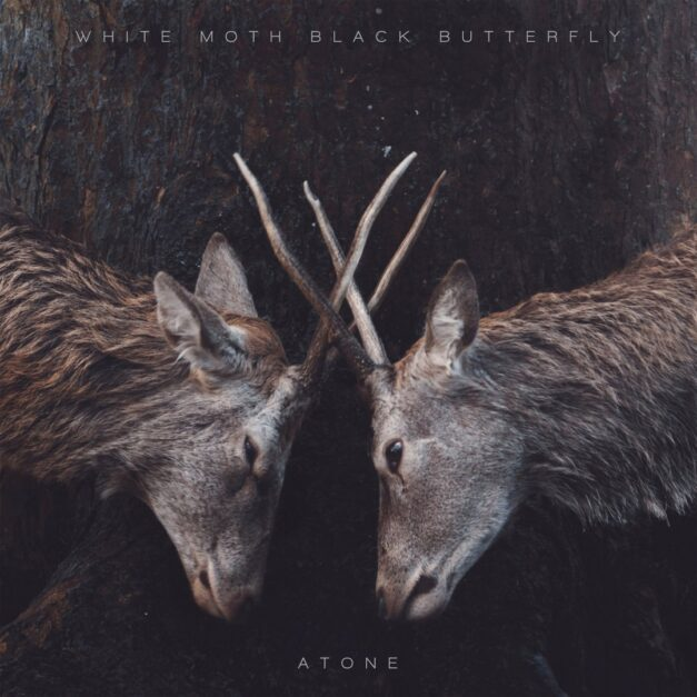 White Moth Black Butterfly – Atone