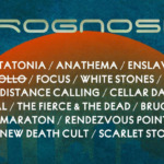 Behind Prognosis Festival with Rob van der Donk