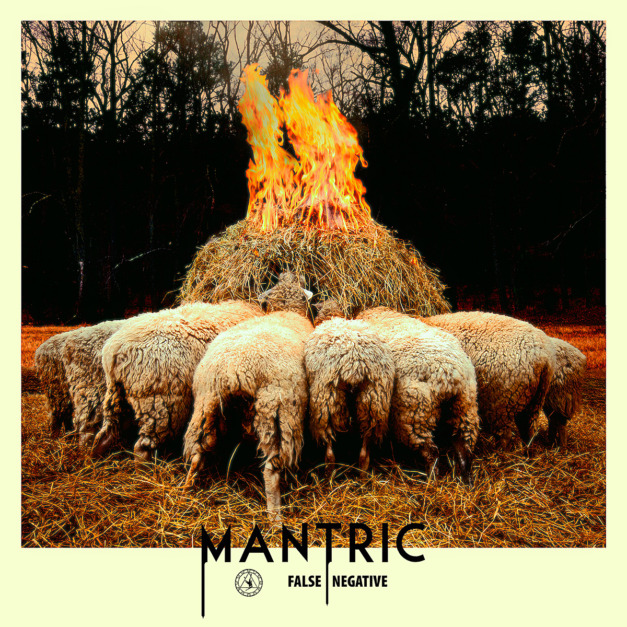 Mantric – False Negative