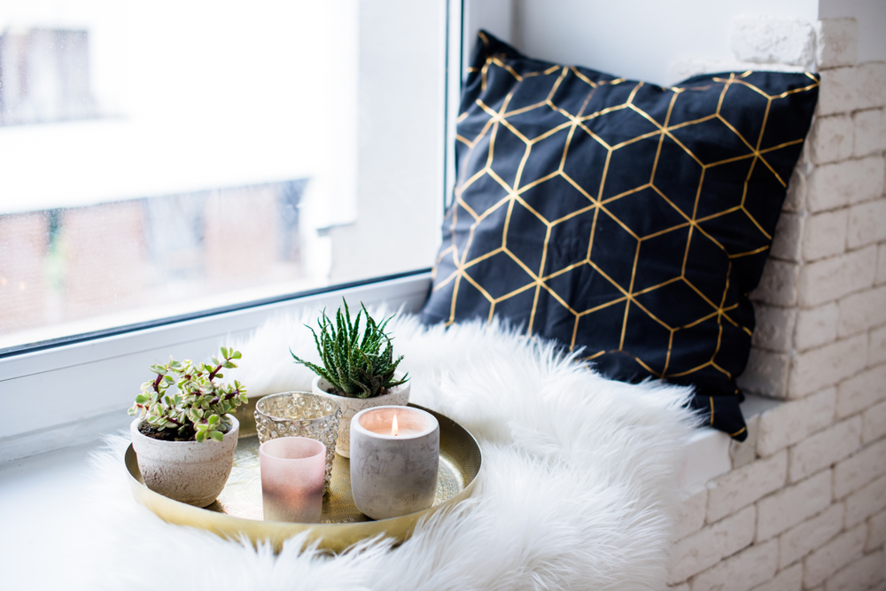 succulents on a tray on a blanket near a window