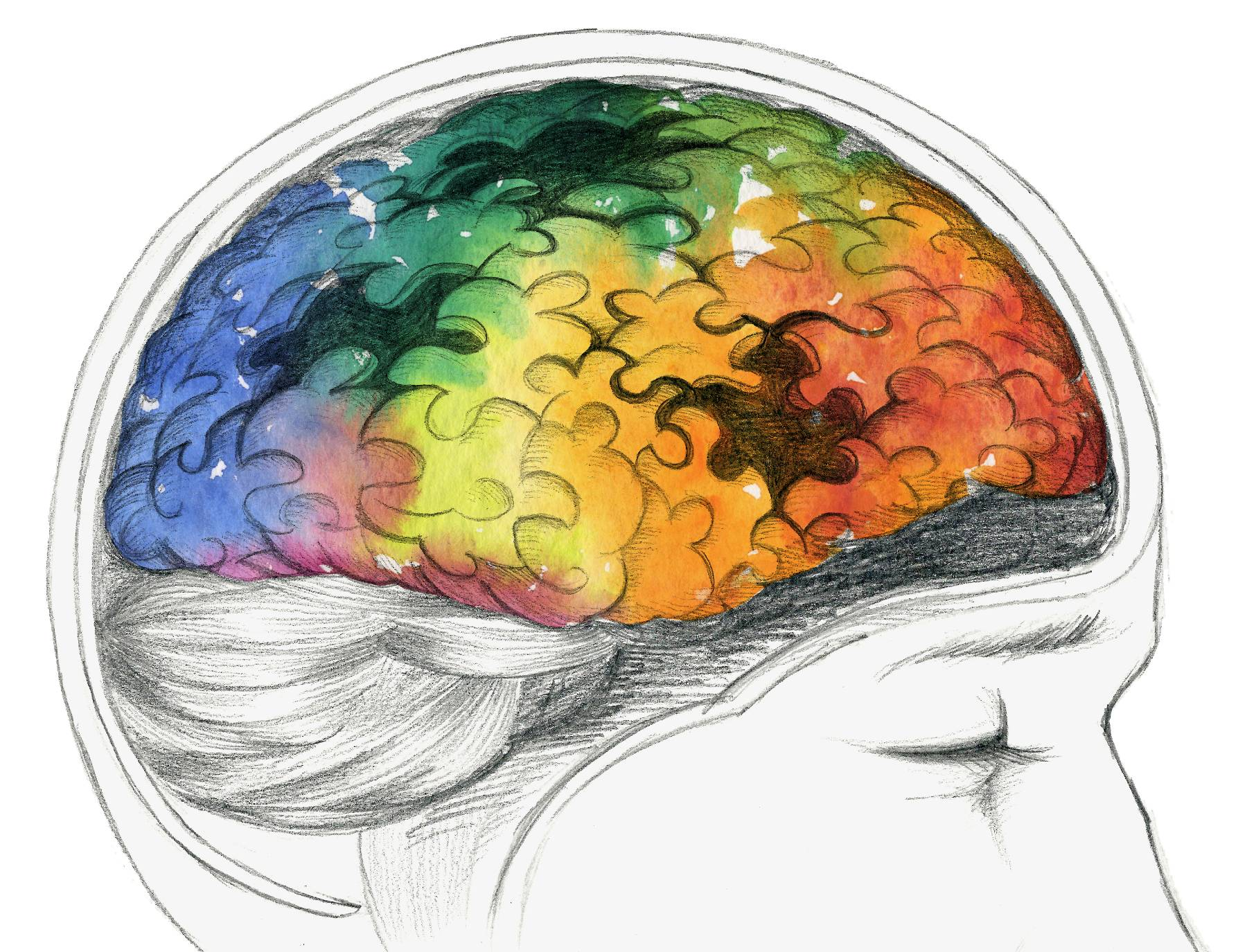 A drawing of a brain in multi-colors with black puzzle piece shapes missing