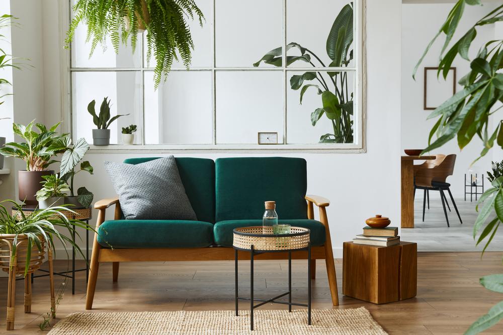 indoor plants in a Scandinavian style home