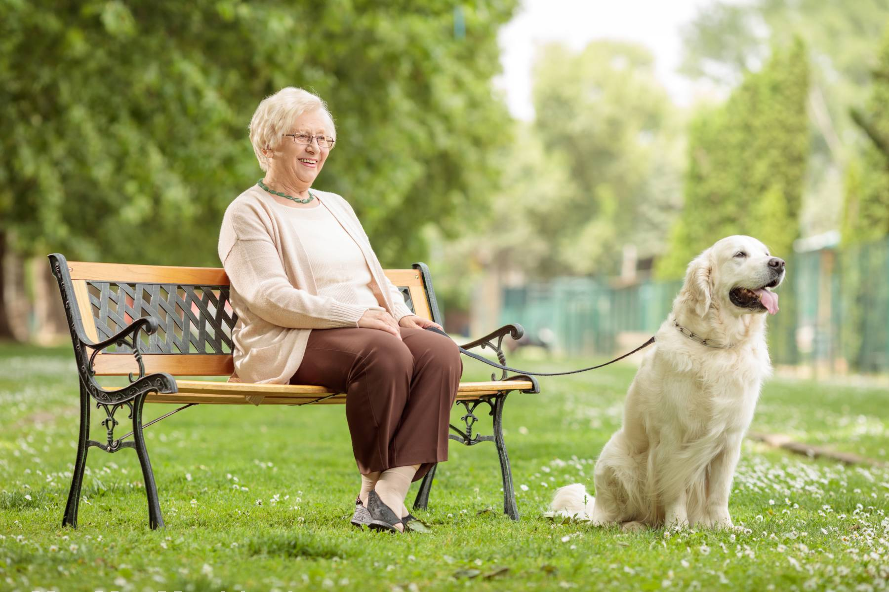 senior lady sitting on a bench with her dog