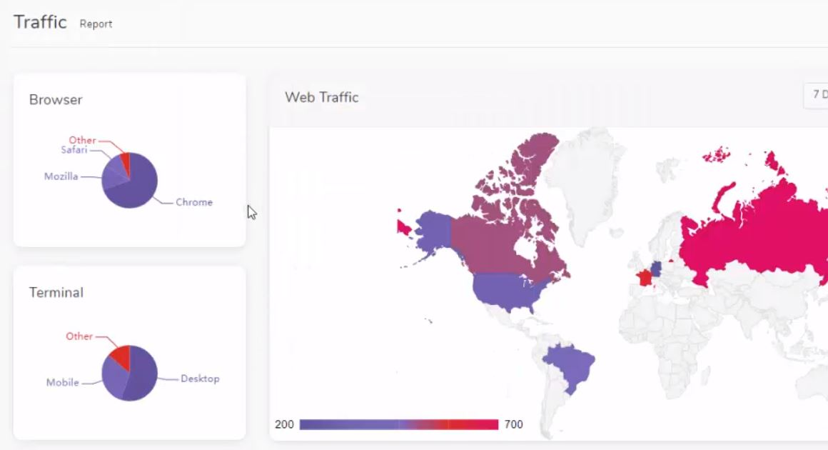 Website Analytics and Traffic Report