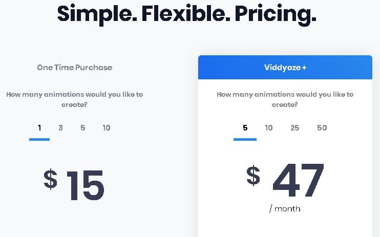 Viddyoze Pricing