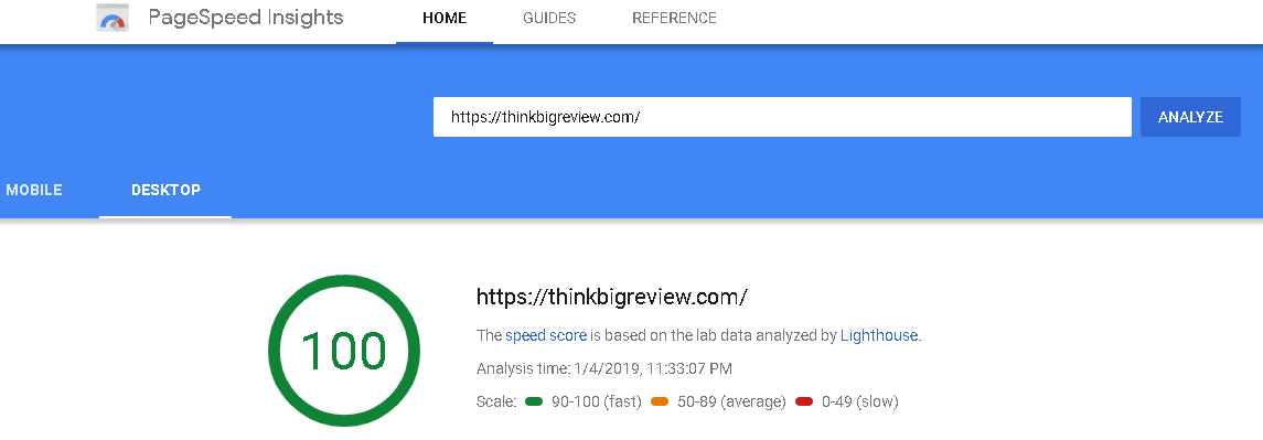 ThinkBigReview PageSpeed Insight Results