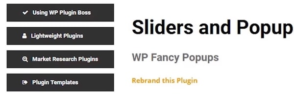 WP Plugin Boss Example Step 1