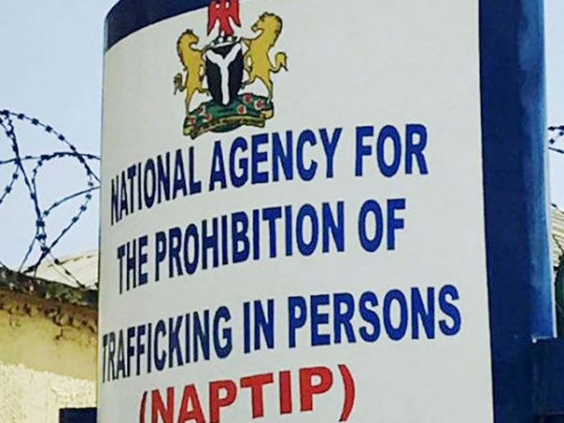 NAPTIP Hands over 23 Victims of Human Trafficking to Katsina Govt - THISDAY Newspapers