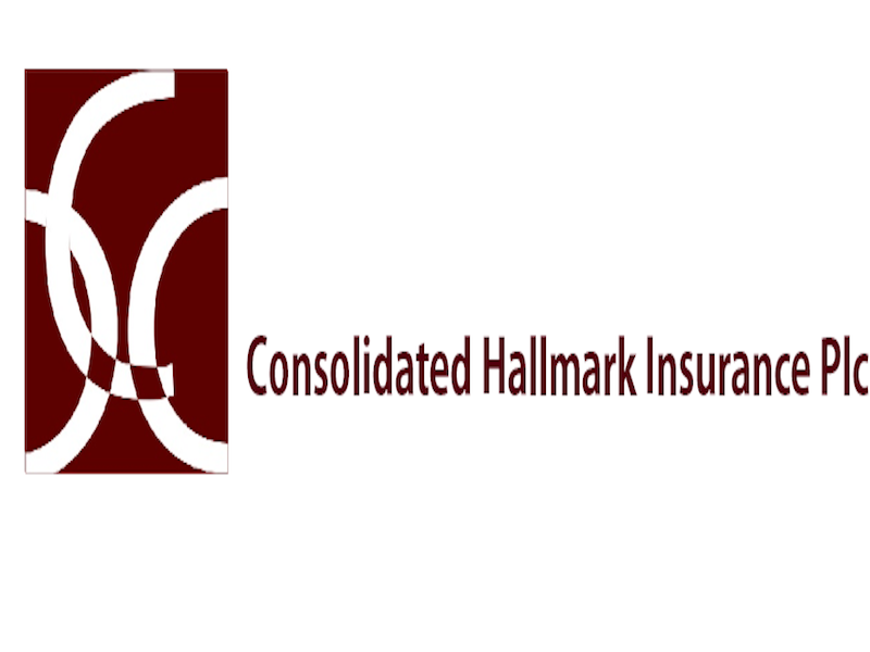 Consolidated Hallmark Insurance Plans Private PlacementTHISDAYLIVE