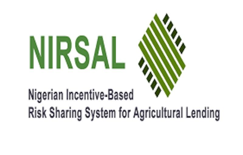 NIRSAL Facilitates N148 Billion Credit for Agric/Agribusiness  InvestmentTHISDAYLIVE