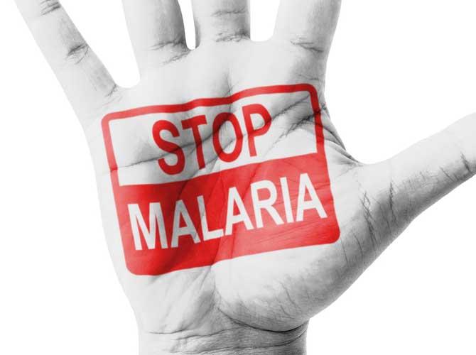 ACOMIN Begins Eradication of Malaria in Osun - THISDAY Newspapers