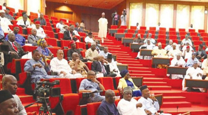 Senate Performs Oversight Duties As House of Reps Battles Osinbajo