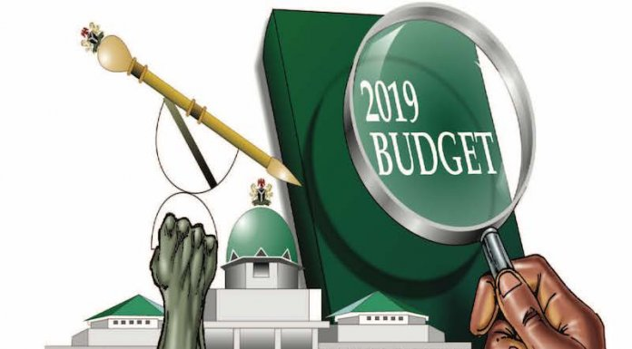 2019 Budget and The Subsidy Question