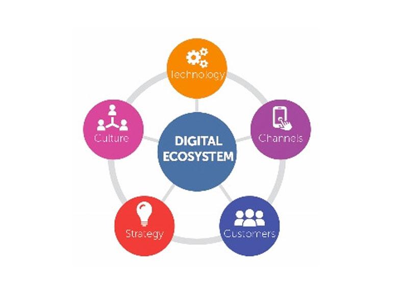 Impact of 9mobile on Nigeria's Digital Ecosystem - THISDAYLIVE