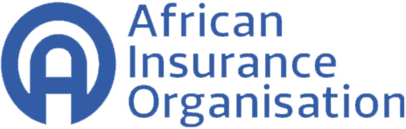 AIO Lists Benefits of Digitalisation to African Insurance MarketTHISDAYLIVE