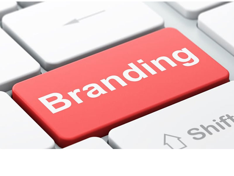 What is Brand Identity and How Do You Build a Brand?THISDAYLIVE