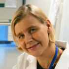Annamari Heikinheimo, Helsingin yliopisto