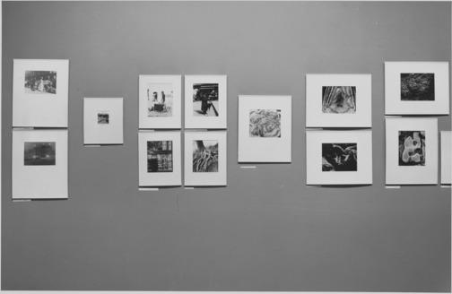 Tina Modotti. Roses, Mexico. 1924 | MoMA