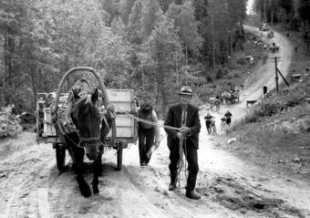 Evacuation of Karjala (Karelia) - late 1939, Finland. People had to leave their homes and ...
