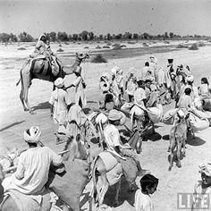 1000+ images about 1947 india pak partition on  | India independence, Jawaharlal nehru ...