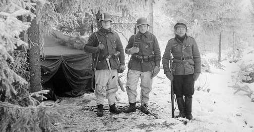 Defensive battles in December 1939   Talvisota