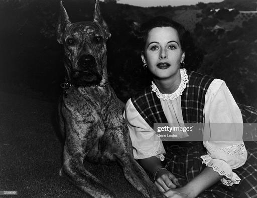Austrian-born actor Hedy Lamarr , then known as Hedwig Kiesler,... News Photo    Images