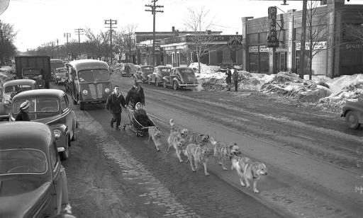Flashback: Dogsledding down Forest Avenue in 1947 - Portland Press Herald