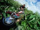 Motorcycle accidents - your questions answered