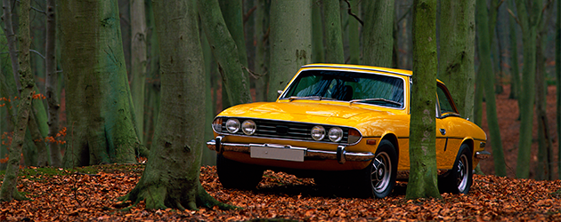 mustard-coloured-car-in-the-woods-in-autumn