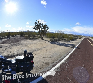 Dave's American Photo Album – Vegas to Bakersfield - 009