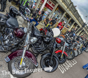 Brightona takes over - 0010