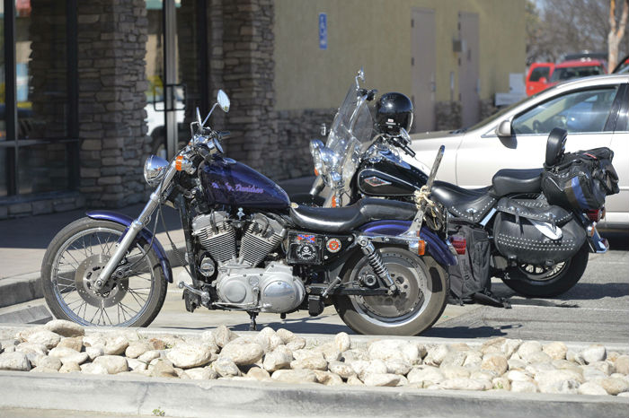 Two Harleys parked up in Gonzales