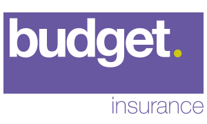 Budget Insurance Broker Reviews