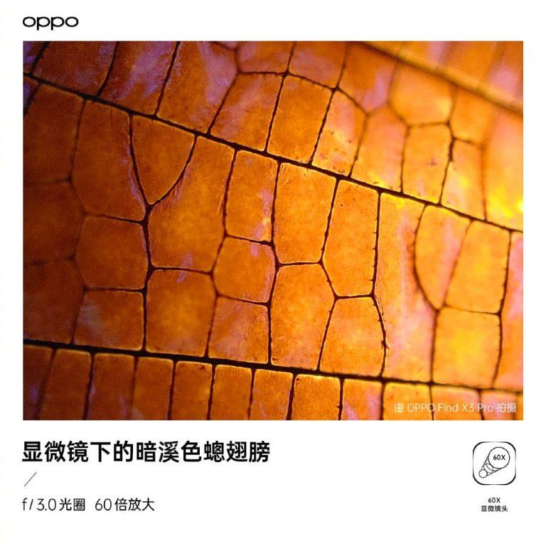 OPPO Find X3 60 倍显微镜头样张
