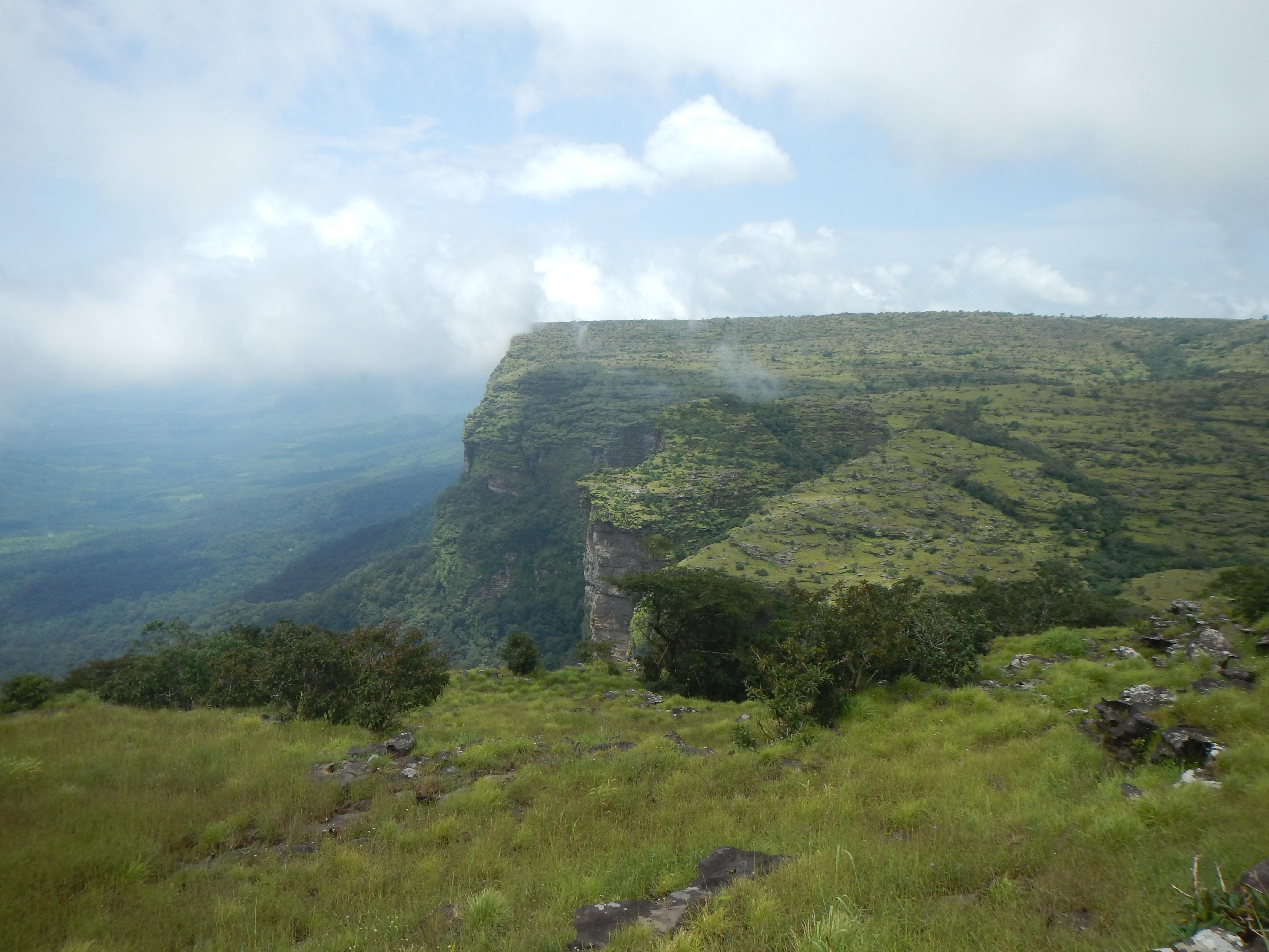 Kounounkan Massif Plateau. (Photo: © Xander van der Burgt, RBG Kew)
