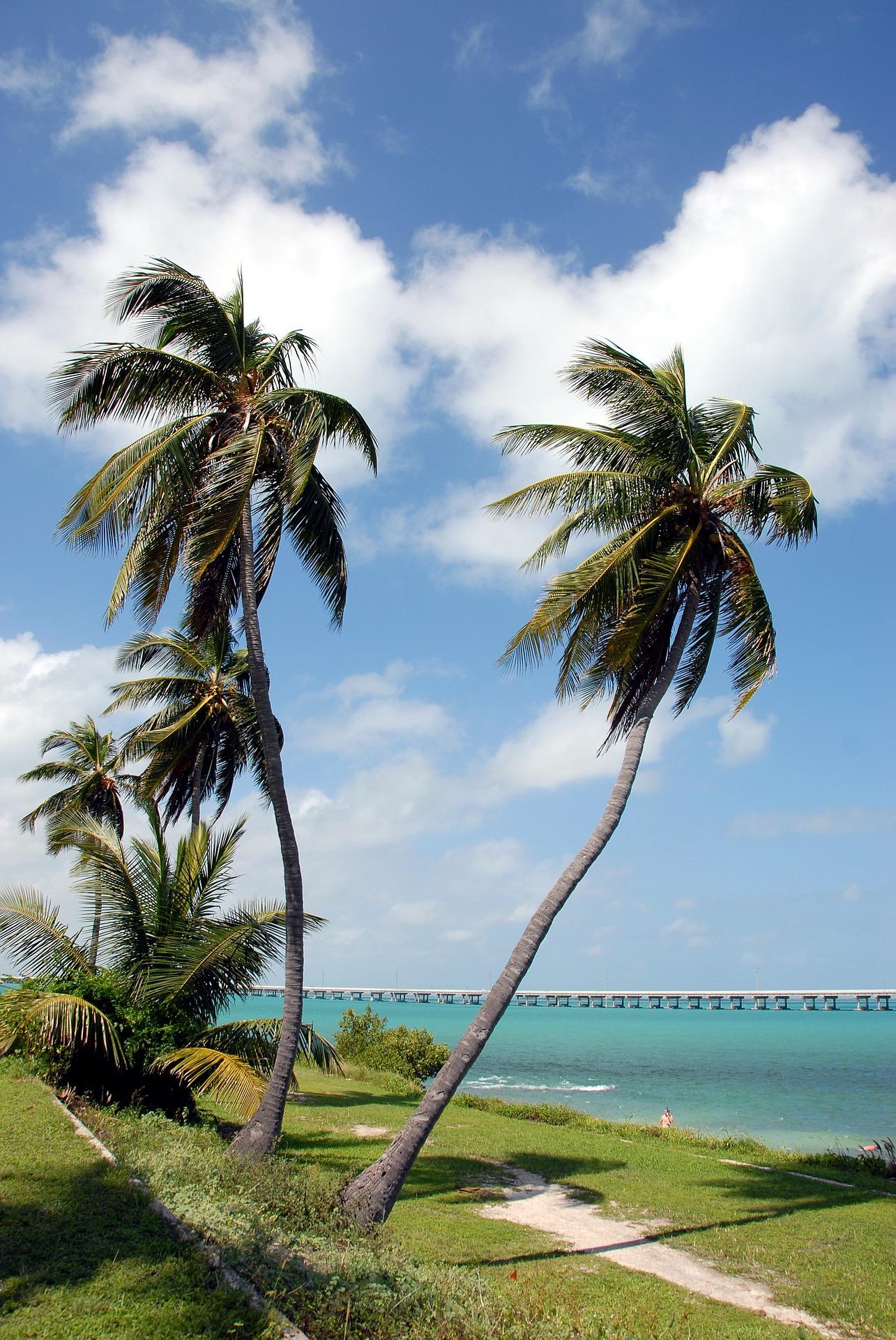 Picture of 7 Mile Bridge