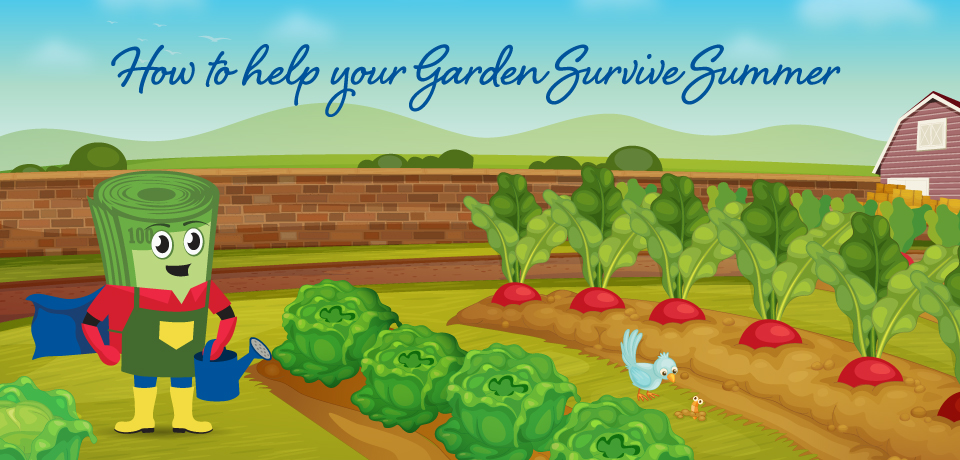 Help Your Garden Survive Summer