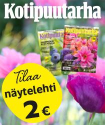Tilaa Kotipuutarha näytelehti hintaan 2 €