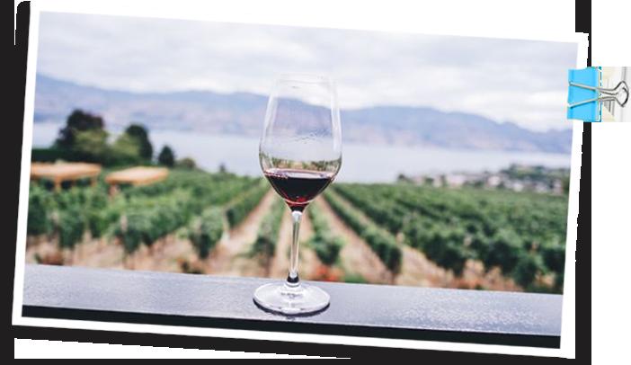 Winefest-viinilasi