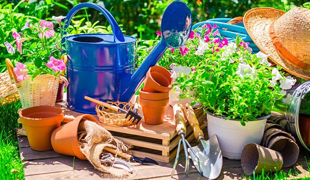 Kuvassa puutarhatyökaluja, kastelukannu ja kukkia.