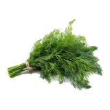GREEN DILL LEAVES - 1 bundle