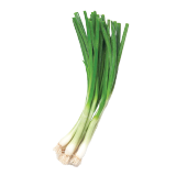 Green Onions - 1 count