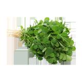 Fenugreek Leaves - 1 count
