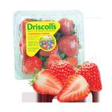 American Strawberry -  250G