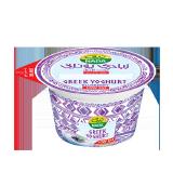 Blueberry Greek Yoghurt High In Protein & Low Fat - 160G