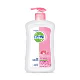 Anti Bacterial Hand Wash Skin Care -  400 Ml