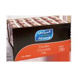 Double Chocolate Milk - 18 × 250 Ml