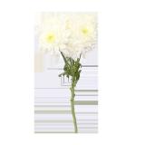 White Chrysanthemum Flower - 1PCS