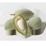 Green Almond - 500 g