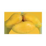 Sindari Mango Pakistan - 500 g